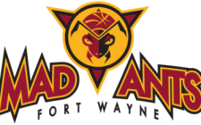 Fort Wayne Mad Ants