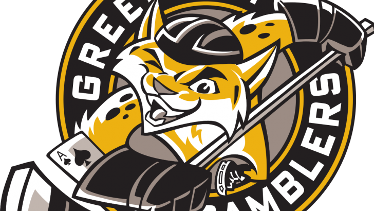 Casey Mittelstadt Nets Two to Lead Green Bay Gamblers to 4-2 Victory