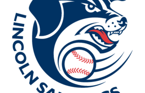 Saltdogs Sweep Double-Header behind Two Homers by Brandon Jacobs
