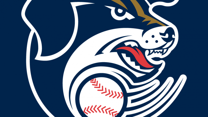 Dashenko Ricardo, Saltdogs Rally to Down RedHawks, 7-4