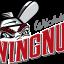 Logan's Run: Trowbridge, Watkins Spark Wingnuts to Victory, 4-1