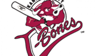 Barrett Astin Solid in Helping T-Bones Even Series, 4-2