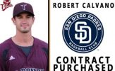 Robert Calvano Contract Purchased by Padres