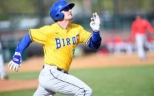 Clint Coulter Grand Slam Propels Canaries to Victory