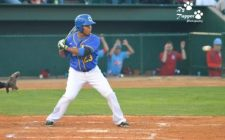 Canaries Mauled by Saltdogs, 15-4