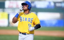 Lago Homers Twice to Lead Canaries, 12-1