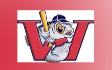 Winnipeg Goldeyes – 2019 American Association Mid-Season Report Card
