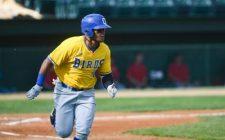 Steele Sharp, But Canaries Bats Silenced, 3-2