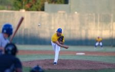 Coulter, Hart Power Canaries over RedHawks, 9-4
