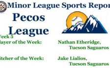Nathan Etheridge Jake Lialios Earn Week 5 Pecos League Honors