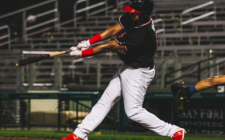 Tomshaw Cages Canaries Bats, RedHawks Soar