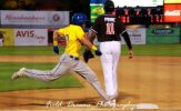 Canaries Rally Falls Short, 8-6