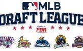 Major League Baseball Announces New Draft League