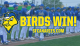 Gotta Remains Red Hot as Canaries Edge Goldeyes Late