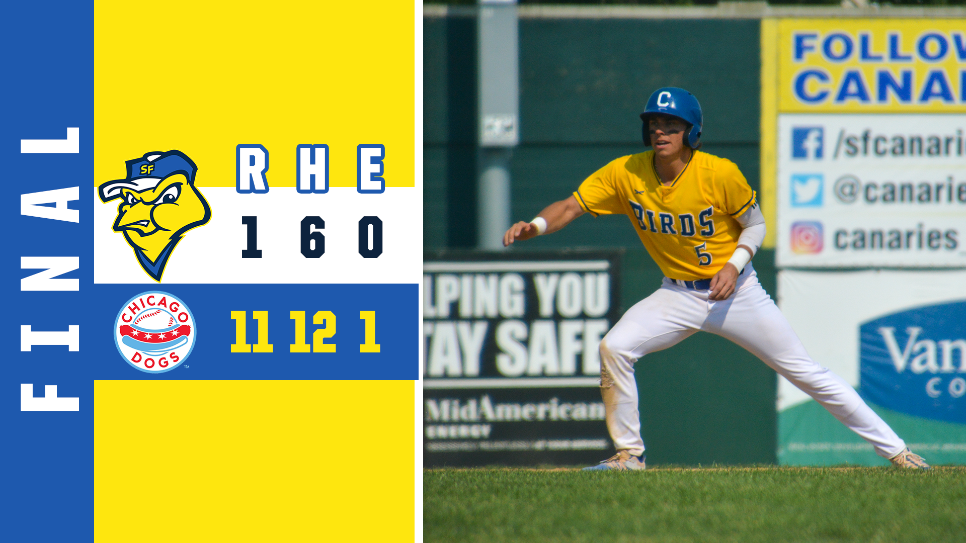 Dogs Complete Sweep with Decisive Win over Canaries