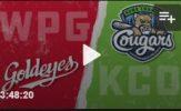 Fox Sharp for Cougars But Team Shutdown by Goldeyes