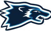 NCAA Division-III Playoffs: Wesley vs. Stevenson