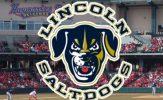 American Association All-Star Break Review: Lincoln Saltdogs