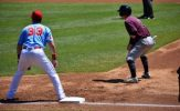 Dogs Dominated by T-Bones, 9-1