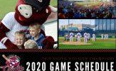 Kansas City T-Bones Release 2020 Schedule