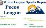 Ian Yetsko & Jake Lialios Earn Week 6 Pecos League Honors