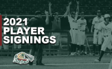 RailCats Add to Roster with Slew of Signings