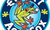 Everett Aquasox logo - green frog in dark blue circle