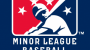 MLB Partnership Taking Its Toll on American Association Rosters