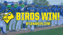 Gotta Leads Canaries in Rout of Goldeyes