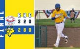 Culbreth Gem Spoiled as Canaries Swept by Dogs